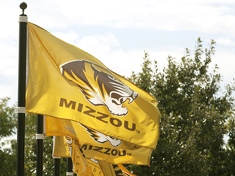 "Gold flags with Tiger head and ""Mizzou"" wave in the wind"